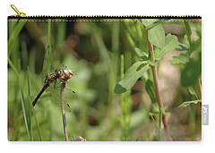 Carry-all Pouch featuring the photograph Spring Dragonfly by LeeAnn McLaneGoetz McLaneGoetzStudioLLCcom
