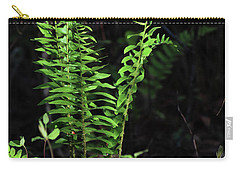 Carry-all Pouch featuring the photograph Spring Ferns by Skip Willits