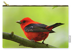 Spring Flame - Scarlet Tanager Carry-all Pouch