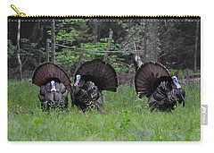 Spring In The Air Carry-all Pouch by Todd Hostetter