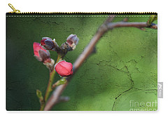 Spring Is Coming  Carry-all Pouch by Claudia Ellis