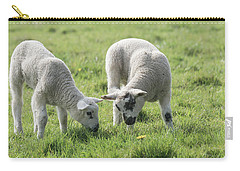 Carry-all Pouch featuring the photograph Spring Lambs by Scott Carruthers