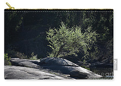 Spring Light Carry-all Pouch by Skip Willits