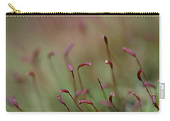 Spring Macro5 Carry-all Pouch