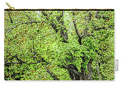 Spring Time By The River Carry-all Pouch