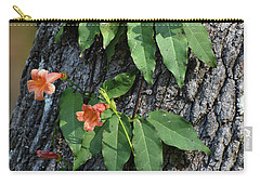 Carry-all Pouch featuring the photograph Vinery by Skip Willits