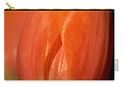 Spring's First Blush Carry-all Pouch by Corinne Rhode