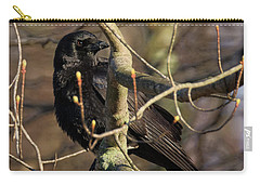Carry-all Pouch featuring the photograph Springtime Crow by Bill Wakeley