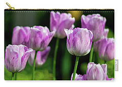 Springtime In Stratford Carry-all Pouch