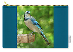 Springtime Jay Carry-all Pouch by Jim Moore