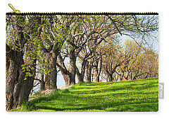 Carry-all Pouch featuring the photograph Springtime Maples by Alan L Graham
