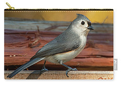Springtime Tufted Titmouse Carry-all Pouch by Jim Moore