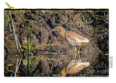 Squacco Heron - Ardeola Ralloides Carry-all Pouch by Jivko Nakev