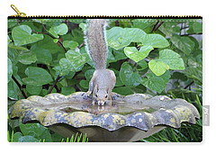 Carry-all Pouch featuring the photograph Squirrel At The Birdbath by Richard Rizzo