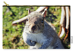 Squirrel Close-up Carry-all Pouch by Helga Novelli