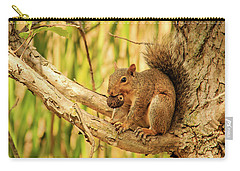 Squirrel In A Tree In The Marsh Carry-all Pouch