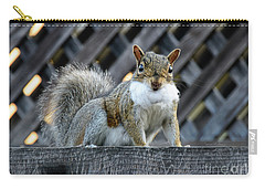 Carry-all Pouch featuring the photograph Squirrel Playing Santa by Susan Wiedmann
