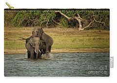 Sri Lankan Elephants  Carry-all Pouch