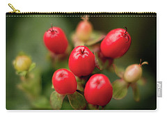 St. John's Wort 2 Carry-all Pouch