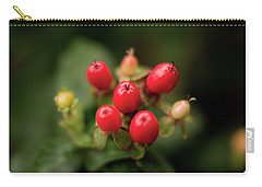 St. John's Wort Carry-all Pouch