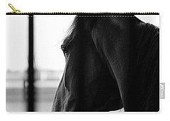 Stable Dreaming Carry-all Pouch