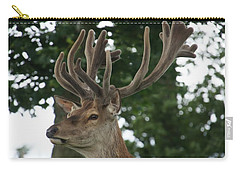 Stag Head. Carry-all Pouch