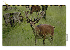 Stag Of The Herd. Carry-all Pouch