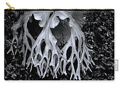 Carry-all Pouch featuring the photograph Staghorn Fern by Wayne Sherriff