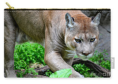 Stalking Carry-all Pouch by Deb Halloran