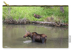 Carry-all Pouch featuring the photograph Standing Guard by James BO Insogna