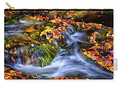 Standing In Motion - Leaves On A Rock 007 Carry-all Pouch