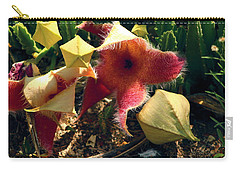 Starfish Of The Desert Carry-all Pouch