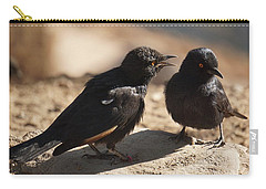 Starling Discussion. Carry-all Pouch