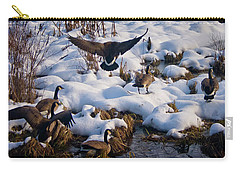 Carry-all Pouch featuring the photograph Staying Put by Albert Seger