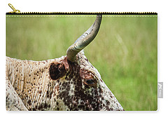 Carry-all Pouch featuring the photograph Steer Portrait by Paul Freidlund