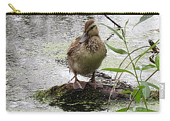 Carry-all Pouch featuring the photograph Stepping Out On My Own by I'ina Van Lawick