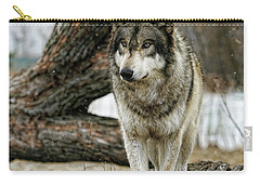 Still Wolf Carry-all Pouch