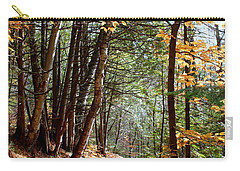 Carry-all Pouch featuring the photograph Stillness by Elfriede Fulda