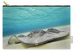 Carry-all Pouch featuring the photograph Stingrays Under Water by Adam Romanowicz