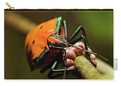 Carry-all Pouch featuring the photograph Stink Bug 666 by Kevin Chippindall