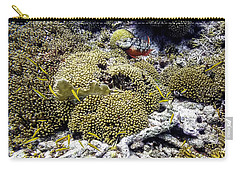 Carry-all Pouch featuring the photograph Stoplight Parrotfish And Yellow Chromis by Perla Copernik