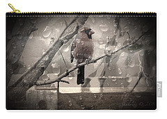 Stormy Window Carry-all Pouch