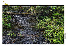 Carry-all Pouch featuring the photograph Streaming by Kendall McKernon