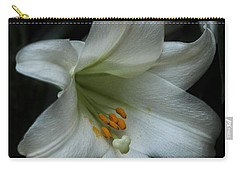 Carry-all Pouch featuring the photograph Assurance by Connie Handscomb