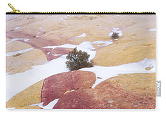 Carry-all Pouch featuring the photograph Stripe by Chad Dutson