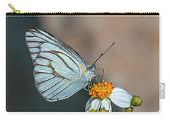 Striped Albatross Butterfly Dthn0209 Carry-all Pouch