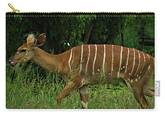Striped Gazelle Carry-all Pouch