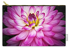 Stunning Carry-all Pouch