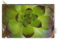 Succulent Carry-all Pouch by Jim Harris
