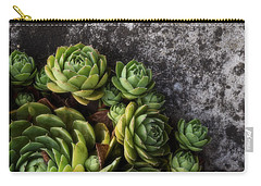 Carry-all Pouch featuring the photograph Succulent by Tom Druin